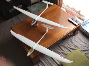 DG600主翼2種